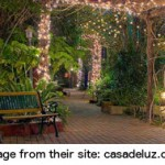 Casa de Luz the only all-organic dining in town