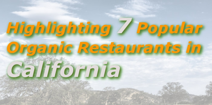 Highlighting 7 Popular Organic Restaurants in California